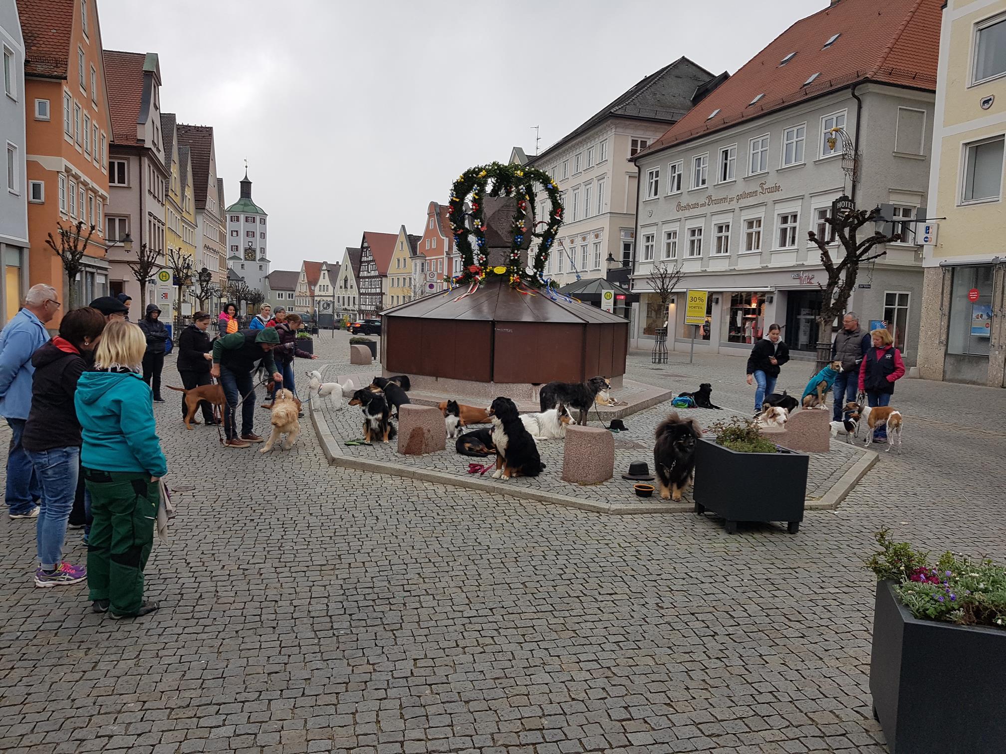 Stadtgand in Günzburg