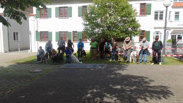 Stadtgang der Hundeschule Waldstetten in Günzburg am Forum