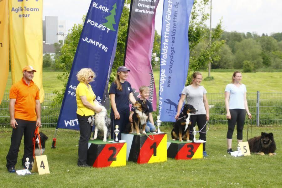 Agility cup Turiner in der hundeschule Waldstetten Kreis Günzburg