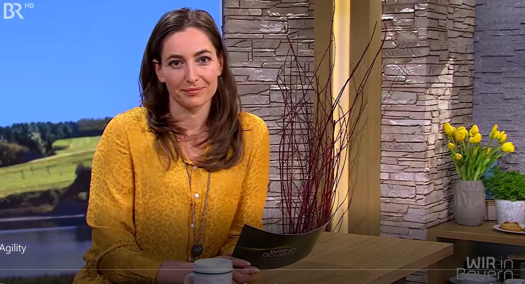 Agility Beitrag der Crazy Dogs im bayerischen Fernsehen